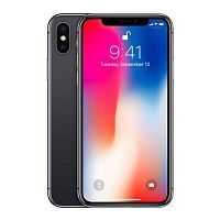 iPhone X 64GB Space Gray (MQAC2)